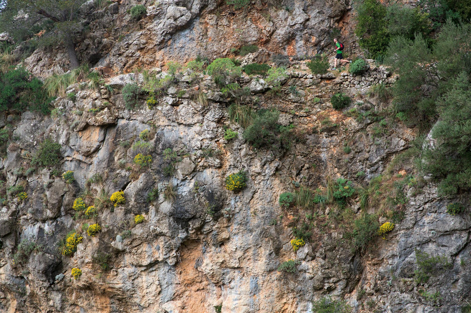 Berglauf statt Ballermann – Trailrunning: Langes Wochenende auf Mallorca