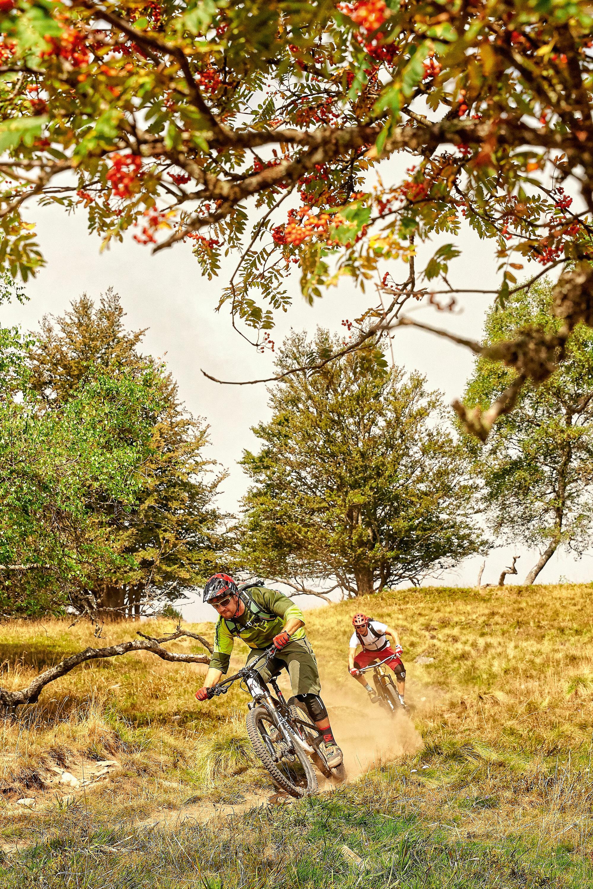 Ballonfahrt – Mountainbiken Vogesen