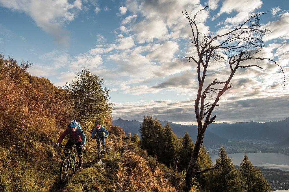Trail-Reichtum
