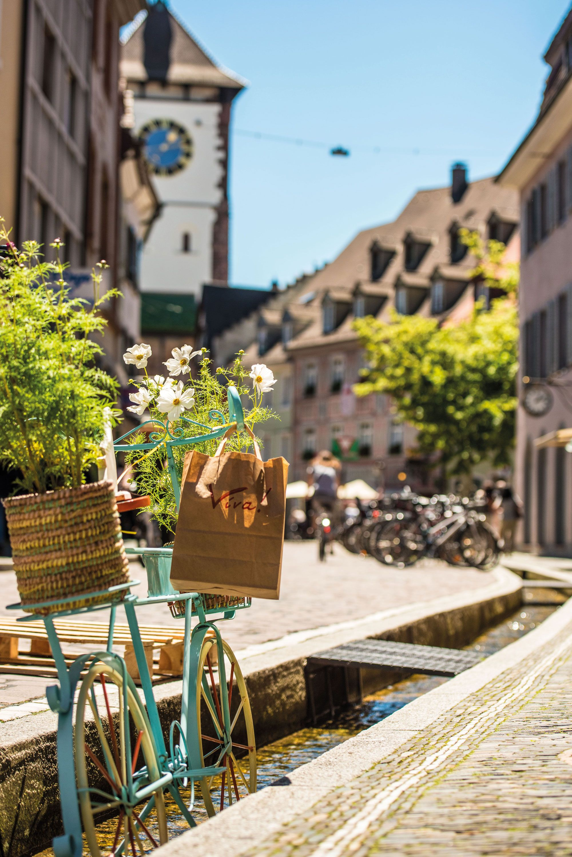 Freiburg –Toskana im Schwarzwald